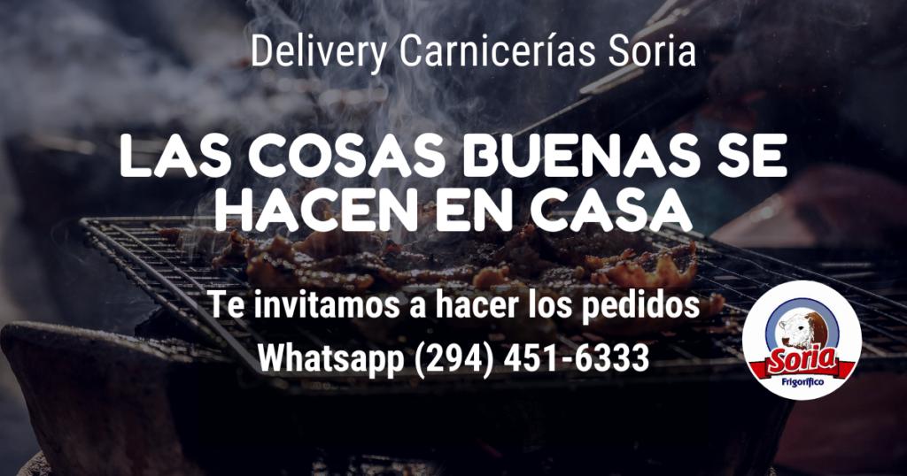 delivery soria numero de telefono 294 451-6333